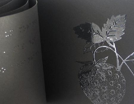 Livro – O Livro Negro das Cores